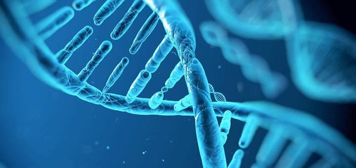 الإنزيمات-الصناعية-تلمح-إلى-إمكانية-الحياة-بدون-الحاجة-إلى-DNA-أو-RNA-720x340